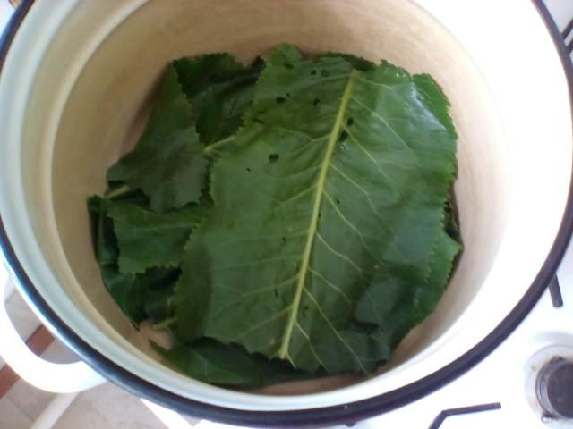 Кладем листья хрена на дно кастрюли